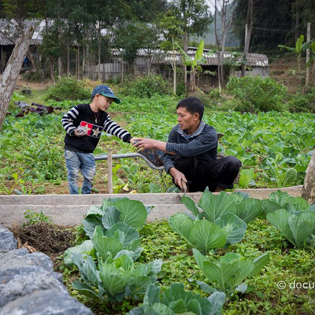 [Instagram] Xây bờ rào #boy #child #fence,#field #HaGiang #help #man #QuanBa #QuyetTien #support #vegetable #Yao